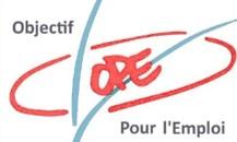 Karine Bontemps, Conseil Administration OPE